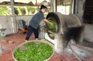 Người dân nơi đây có cách sản xuất trà xanh Thái Nguyên rất riêng