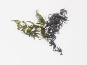 Trà xanh thái nguyên làm ngây ngất bao người yêu trà