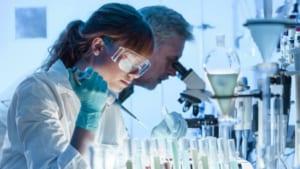 các nhà khoa học tại NCBI đã phân tích gần như đầy đủ thành phần tác dụng của trà xanh