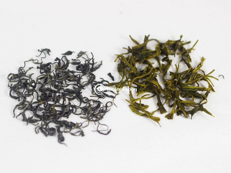 xem xét kĩ cánh trà và bã trà để đánh giá chất lượng